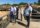 Dirigentes e autarcas do PSD de Lagoa em visitas de proximidade