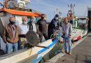 Bloco quer desassoreamento da barra de Tavira e do canal de navegação de St.ª Luzia