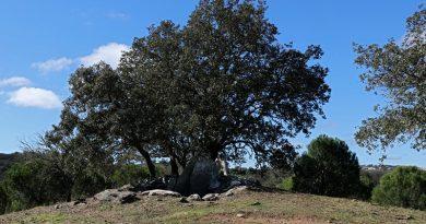 Câmara de Loulé valoriza antas e sítios arqueológicos da freguesia do Ameixial